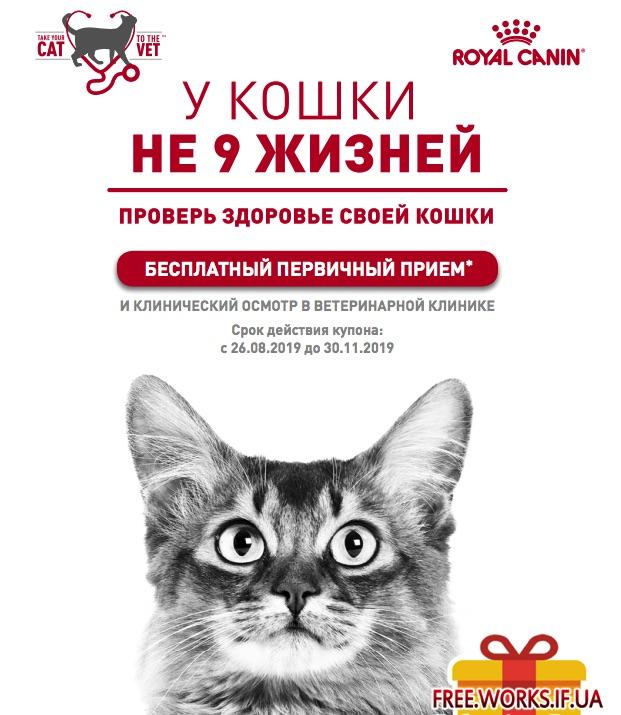 Сухой корм Royal Canin (Роял Канин), 2 кг, для кошек